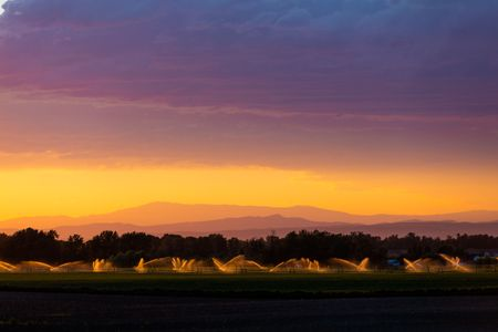 Sunset over irrigated fields