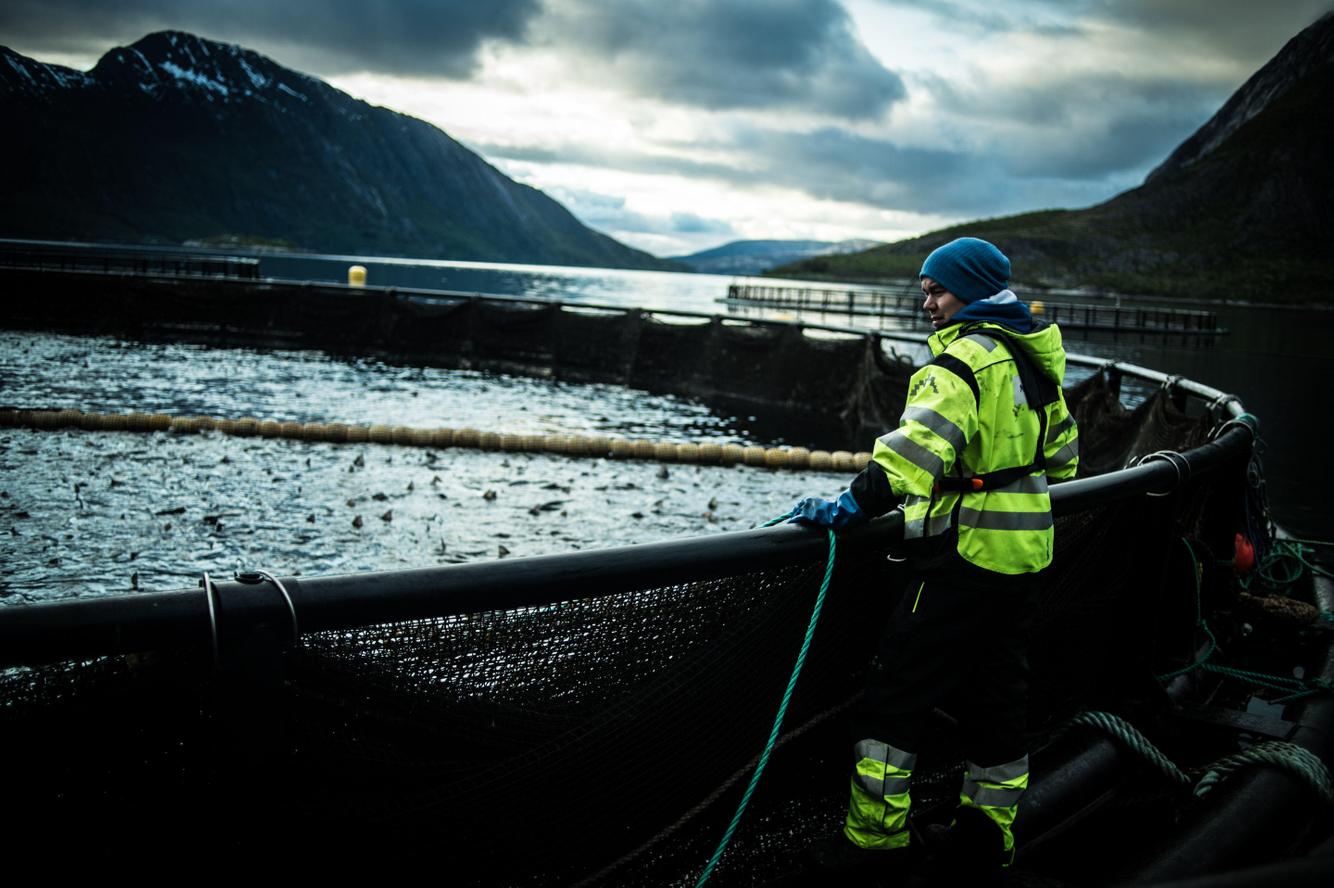 Skrova Island's Salmon Farming
