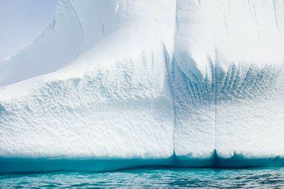 1r20111202_antartica_0571