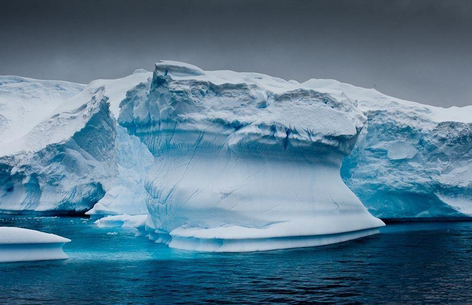 1r20111203_antartica_1071