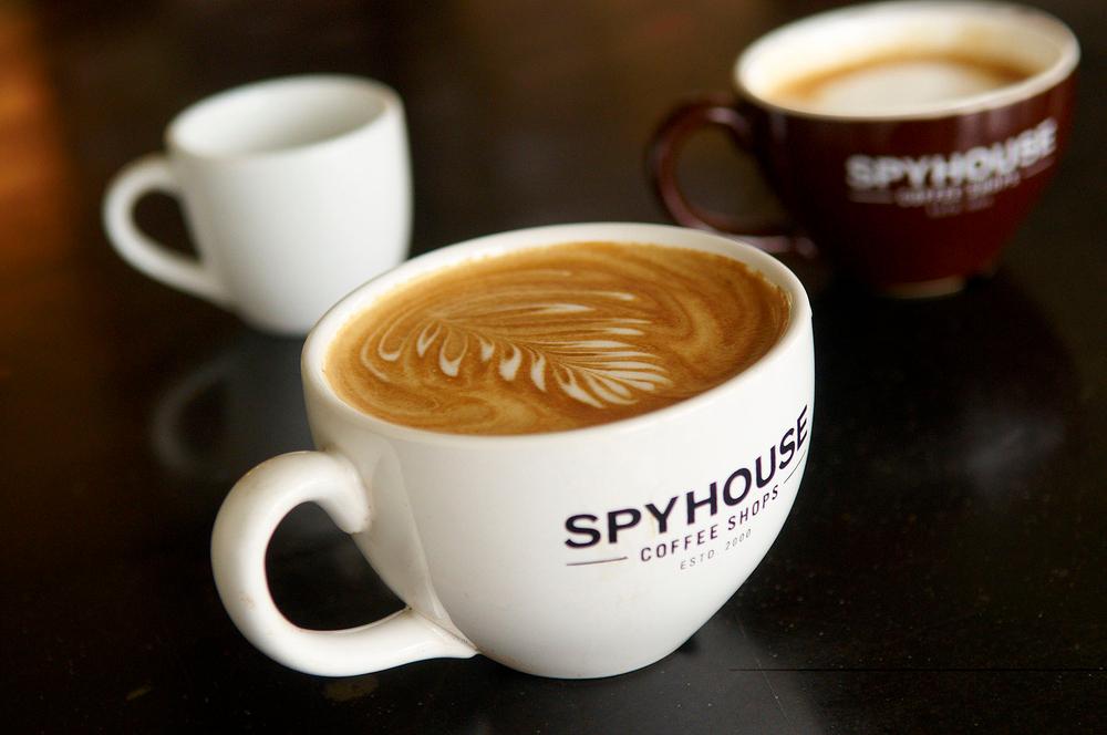 Spyhouse13lb.jpg