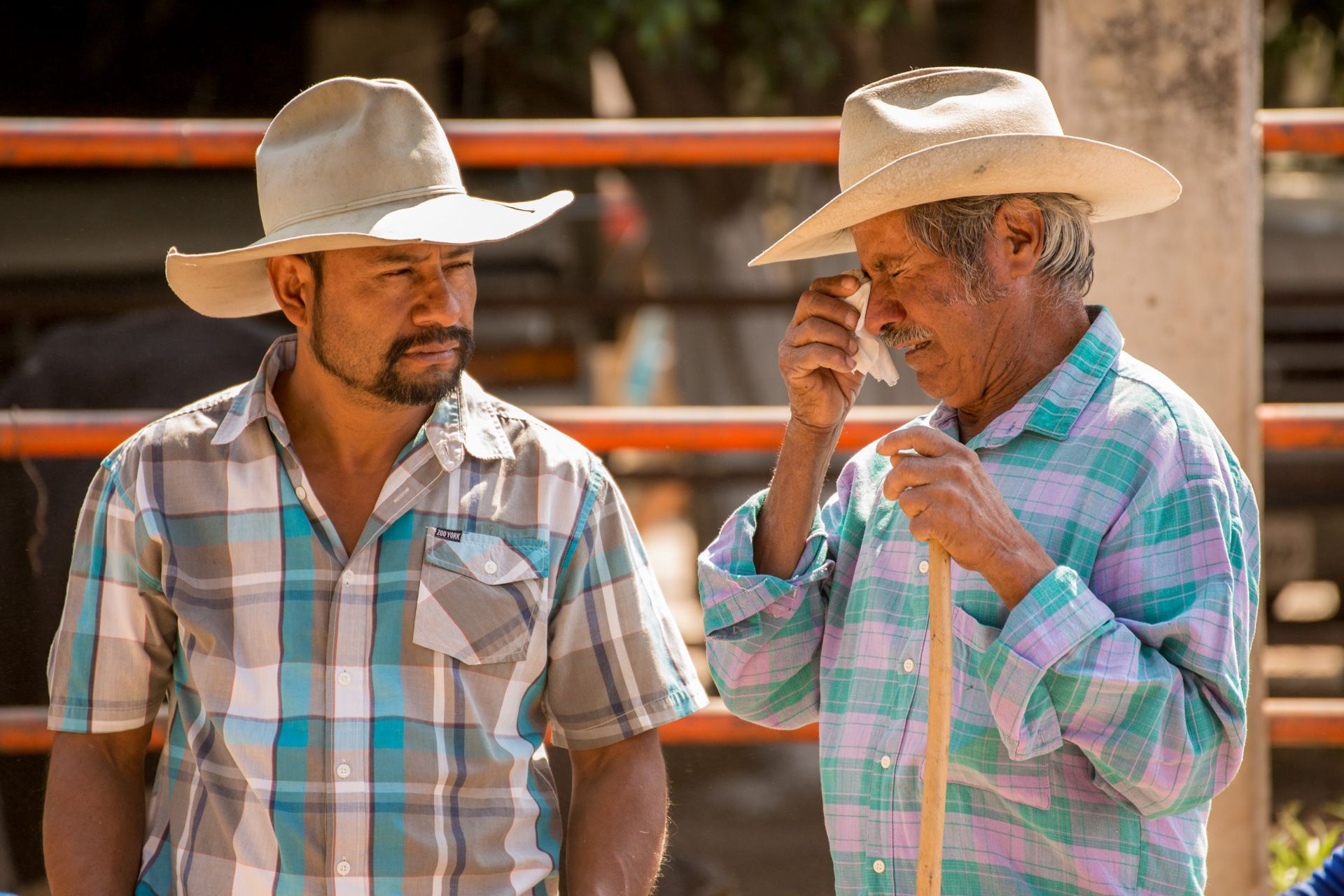 Hurt Feelings, Oaxaca Mexico