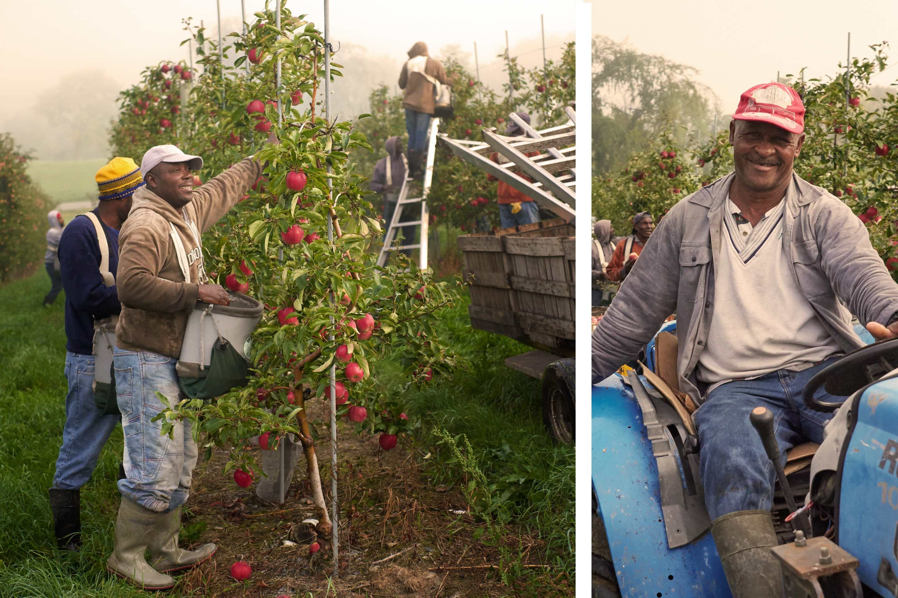 Champlain-Orchard-Workers.jpg
