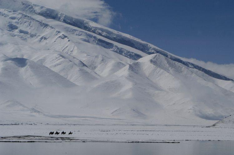 Mountain & Camels, Kyrgyztan Border, China