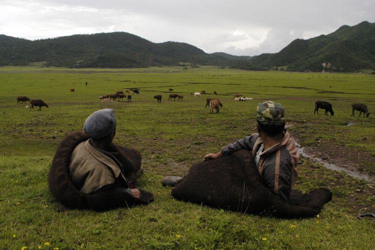 Farmers, Yunnan, China