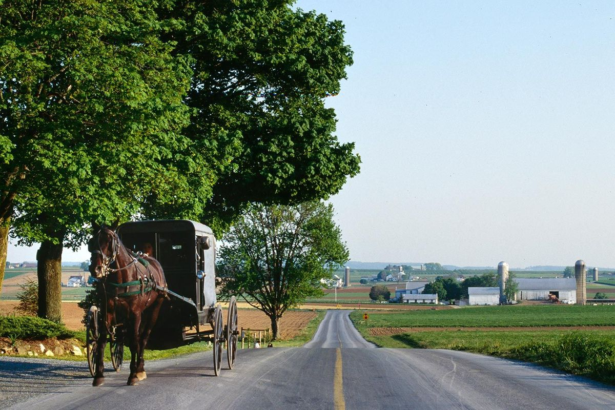 Amish buggy in Lancaster, Pennsylvania