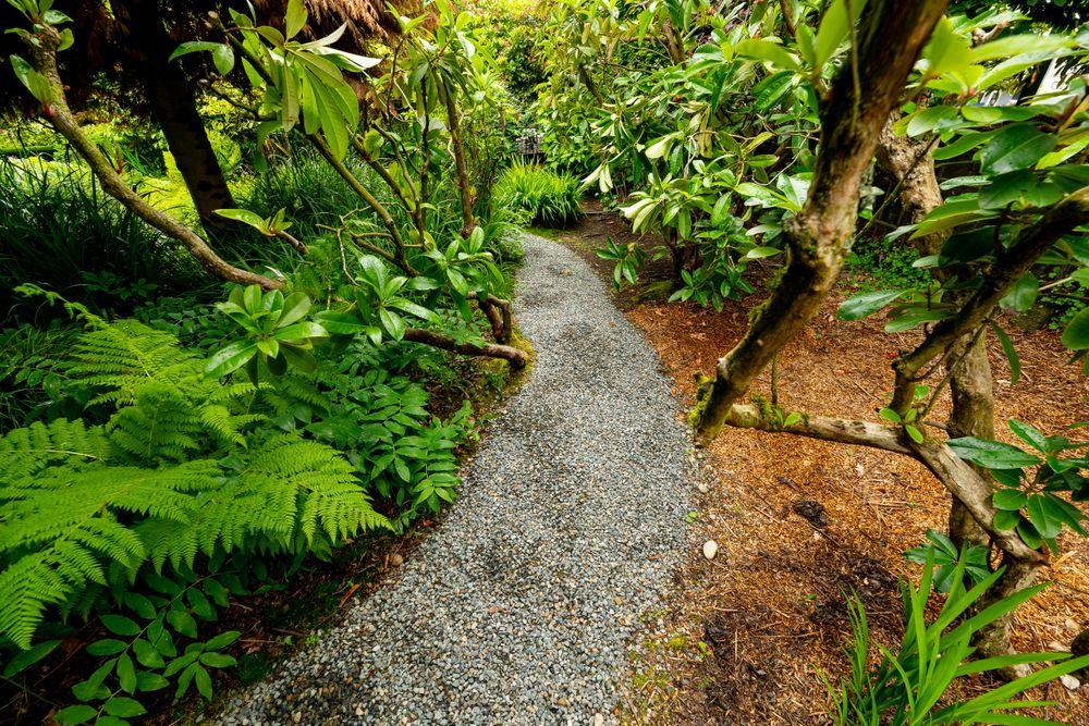 garden.front_383.jpg