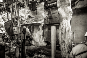 beef.process_11.jpg