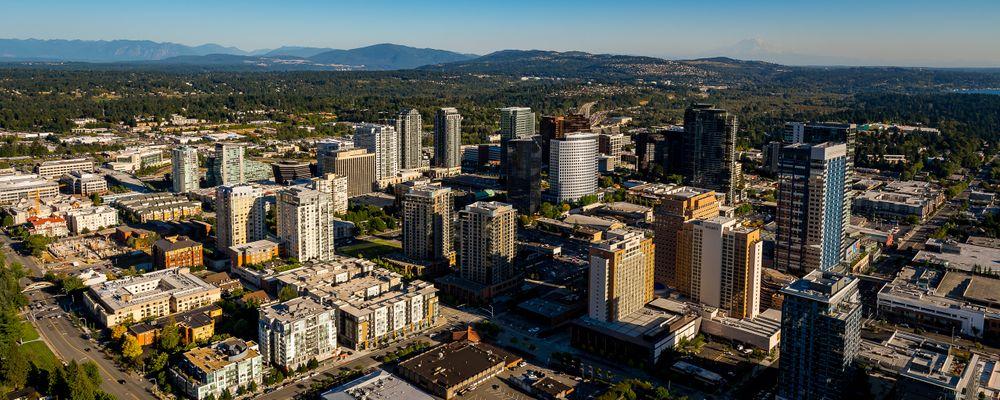 bellevue.aerial_01 copy.jpg
