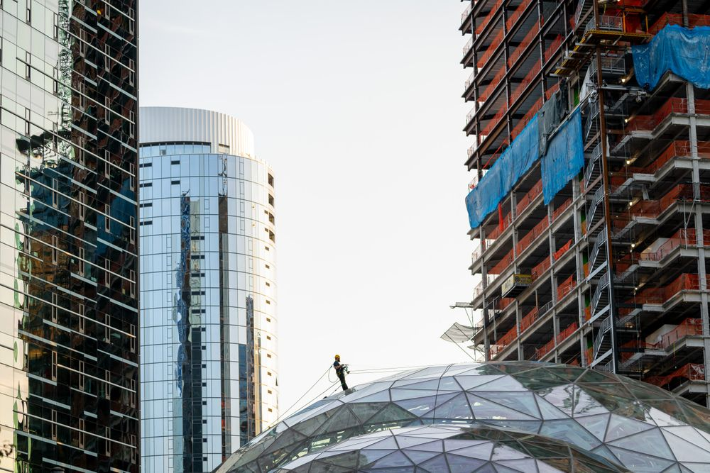 amazon.spheres_00315 copy.jpg