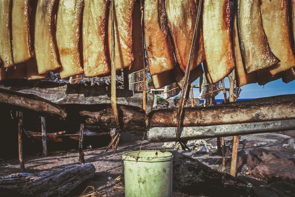 whaling.indonesia_34.jpg