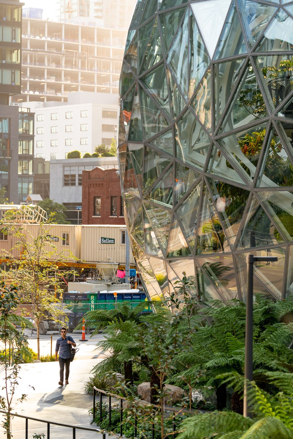 amazon.spheres_00120 copy.jpg