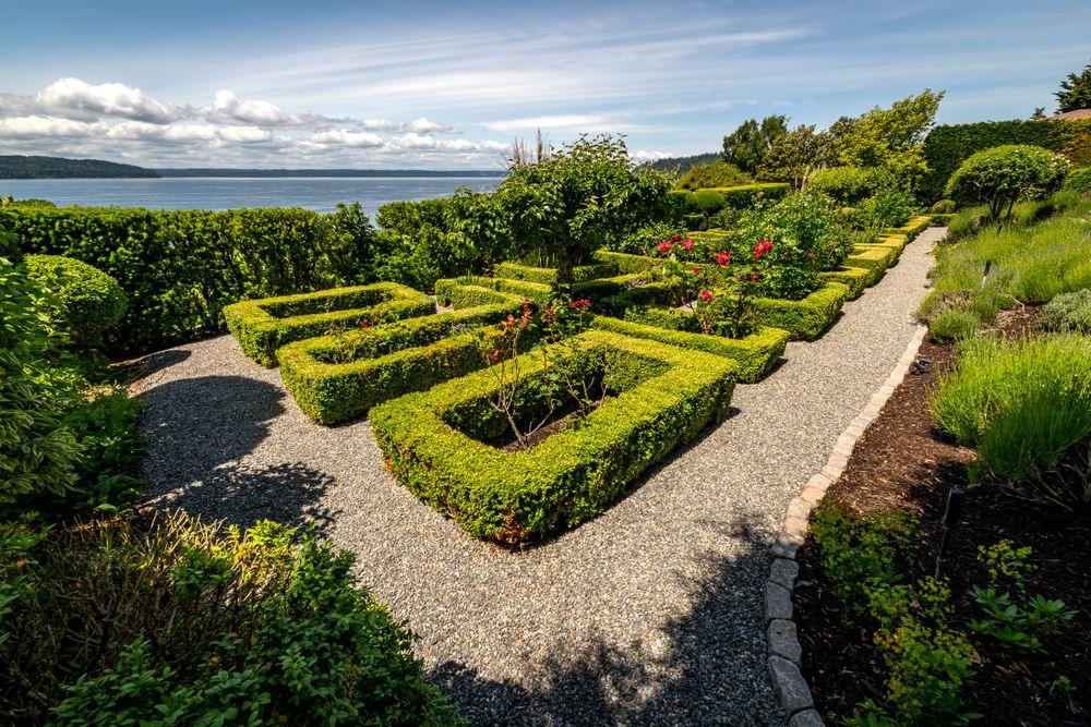 garden.back_335.jpg