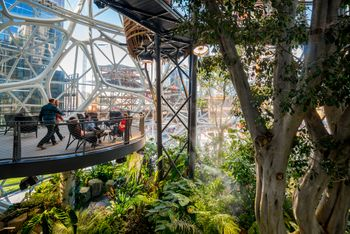 Amazon Spheres, Seattle