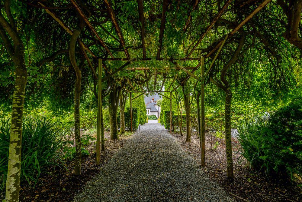 garden.front_509.jpg