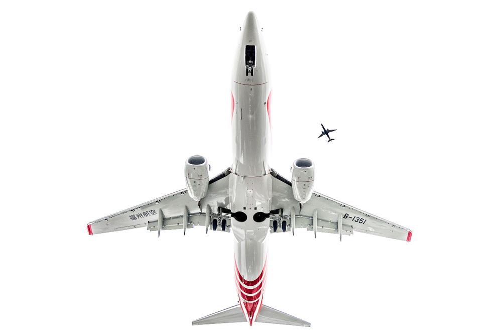 737.jpg