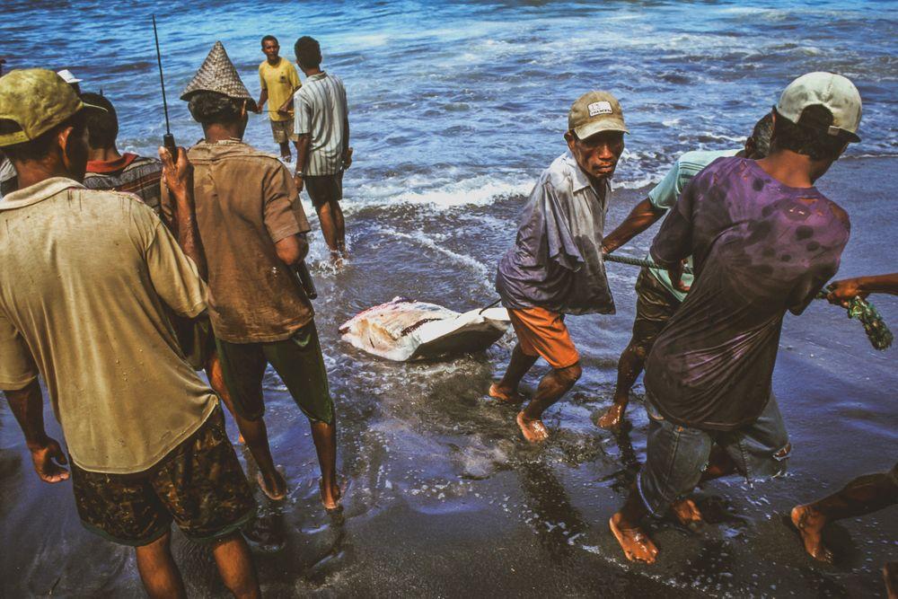 whaling.indonesia_33.jpg