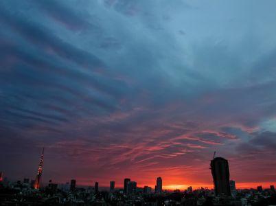 tokyo2018-06-14 at 1.07.33 PM 5.jpg
