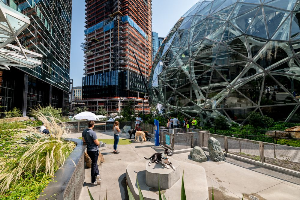 amazon.spheres_00238 copy.jpg