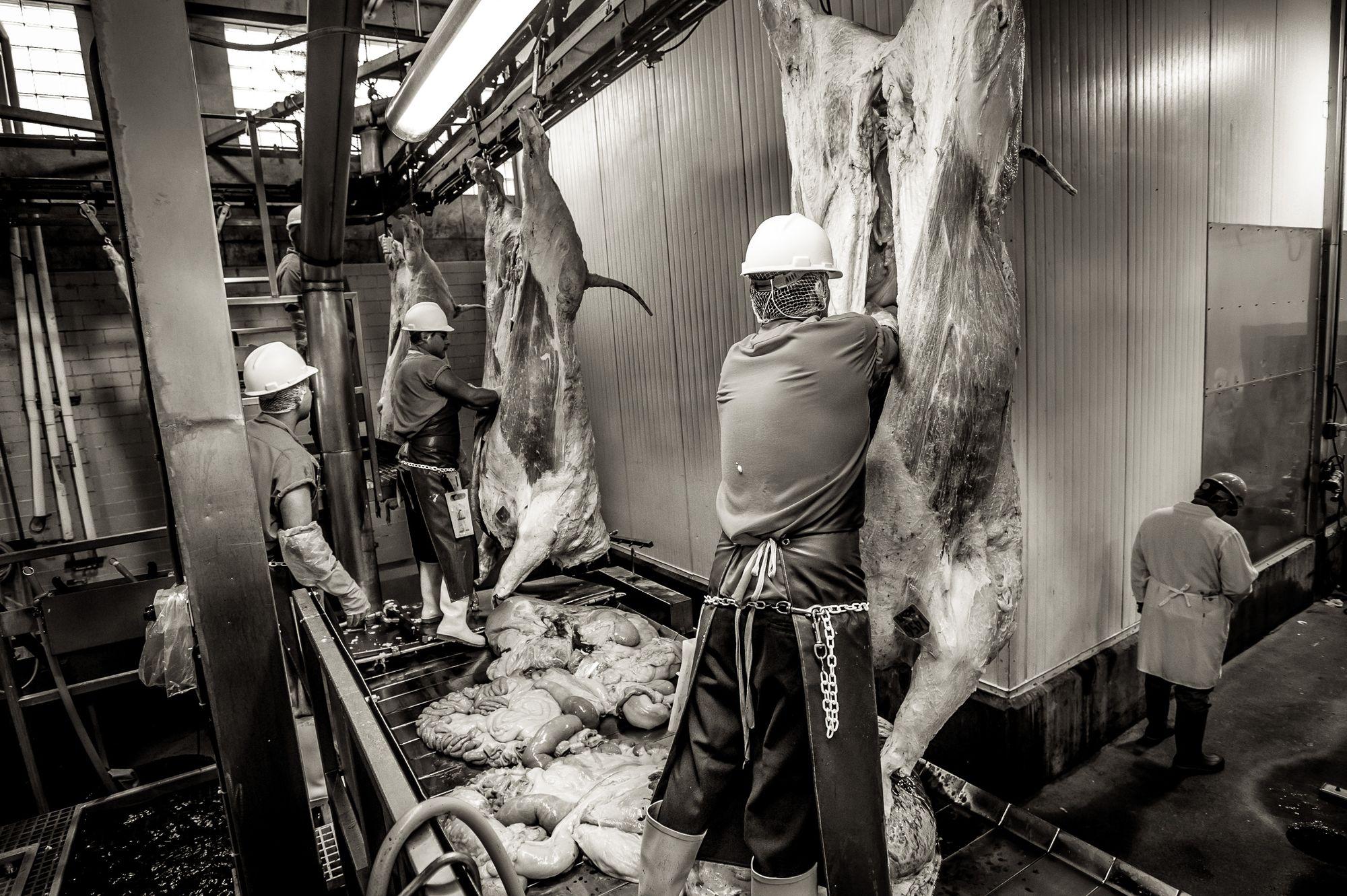beef.process_14.jpg