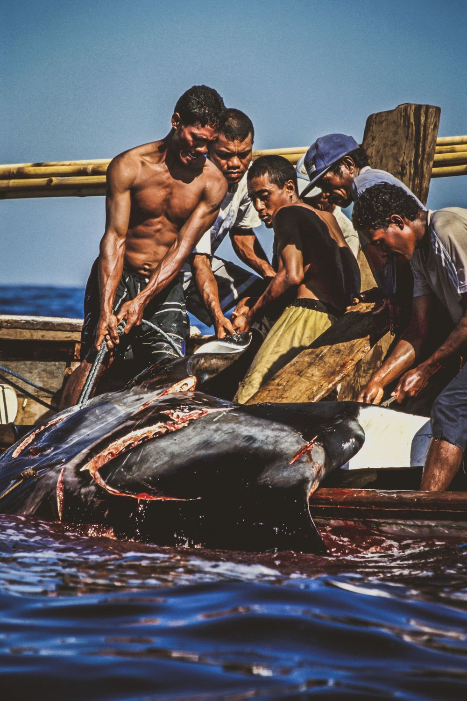 whaling.indonesia_12.jpg