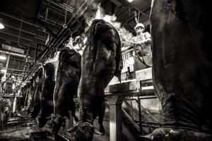 beef.process_10.jpg