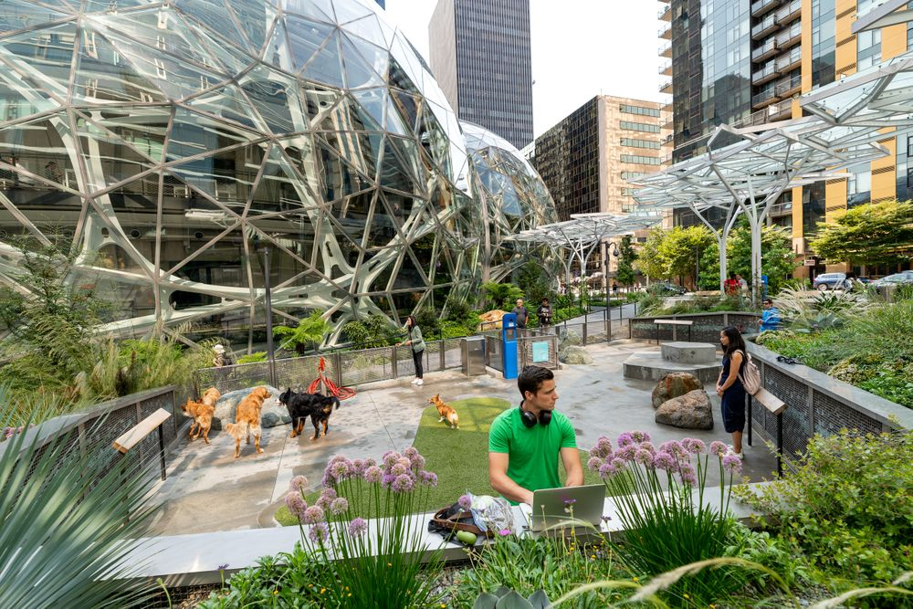 Amazon Spheres Seattle