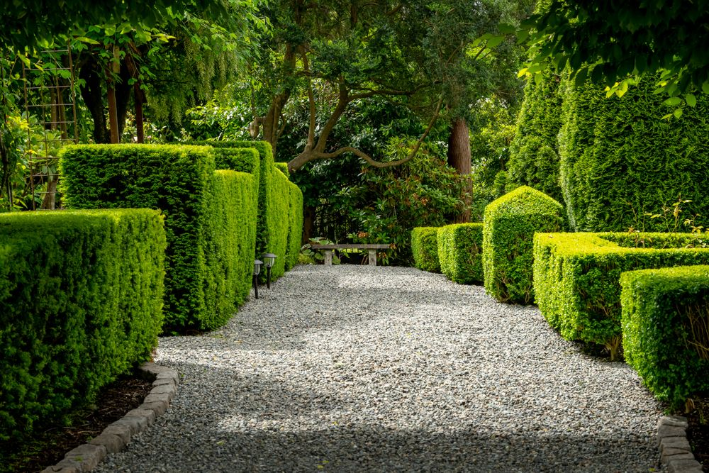 garden.front_528.jpg