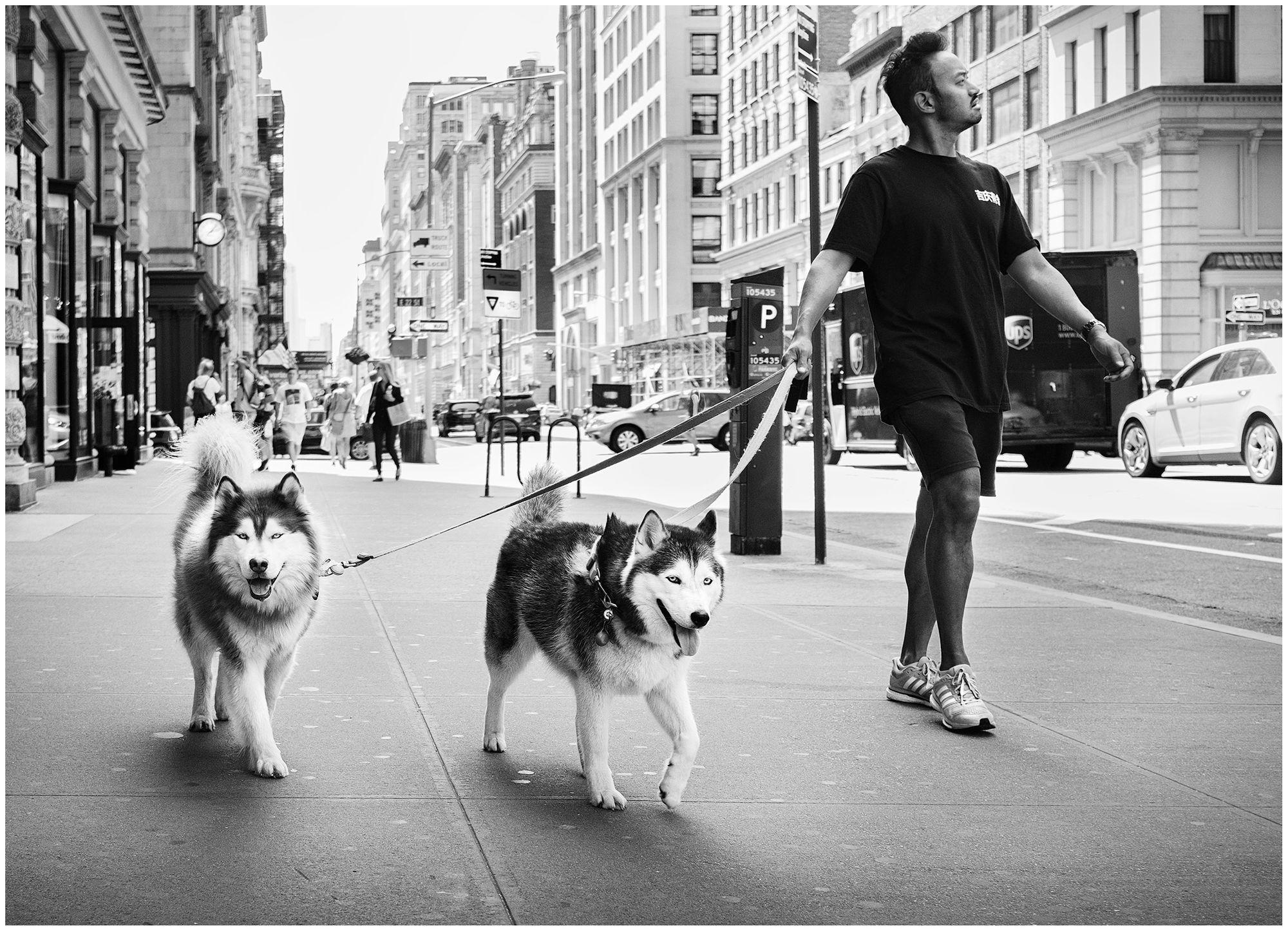 20170826_new_york_city_0089.jpg