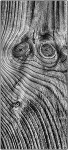 Faces in Wood 2