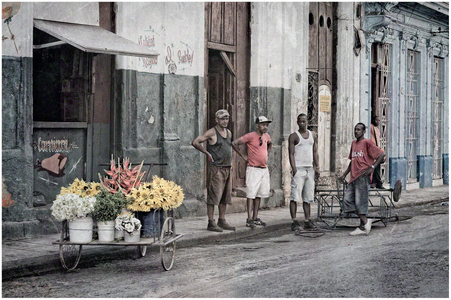 Selling Flowers in Havana