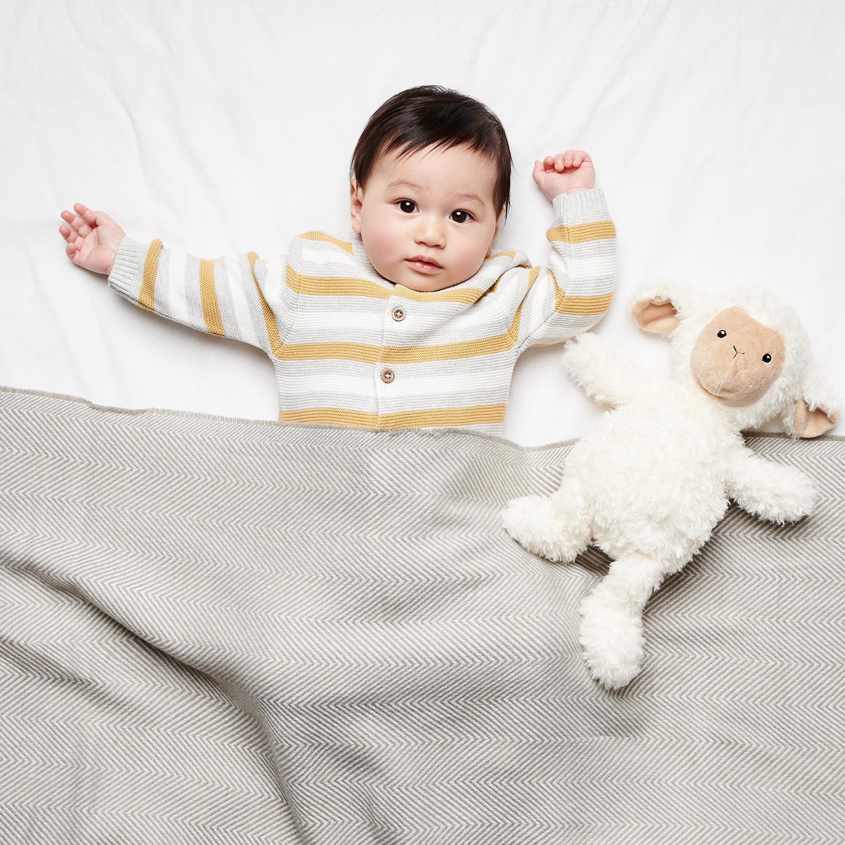 Babies&Bears_Homepage1.jpg