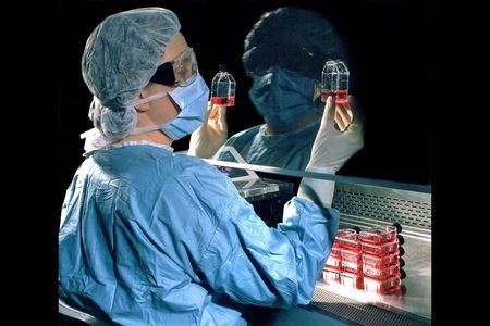 Pharmaceutcal Lab