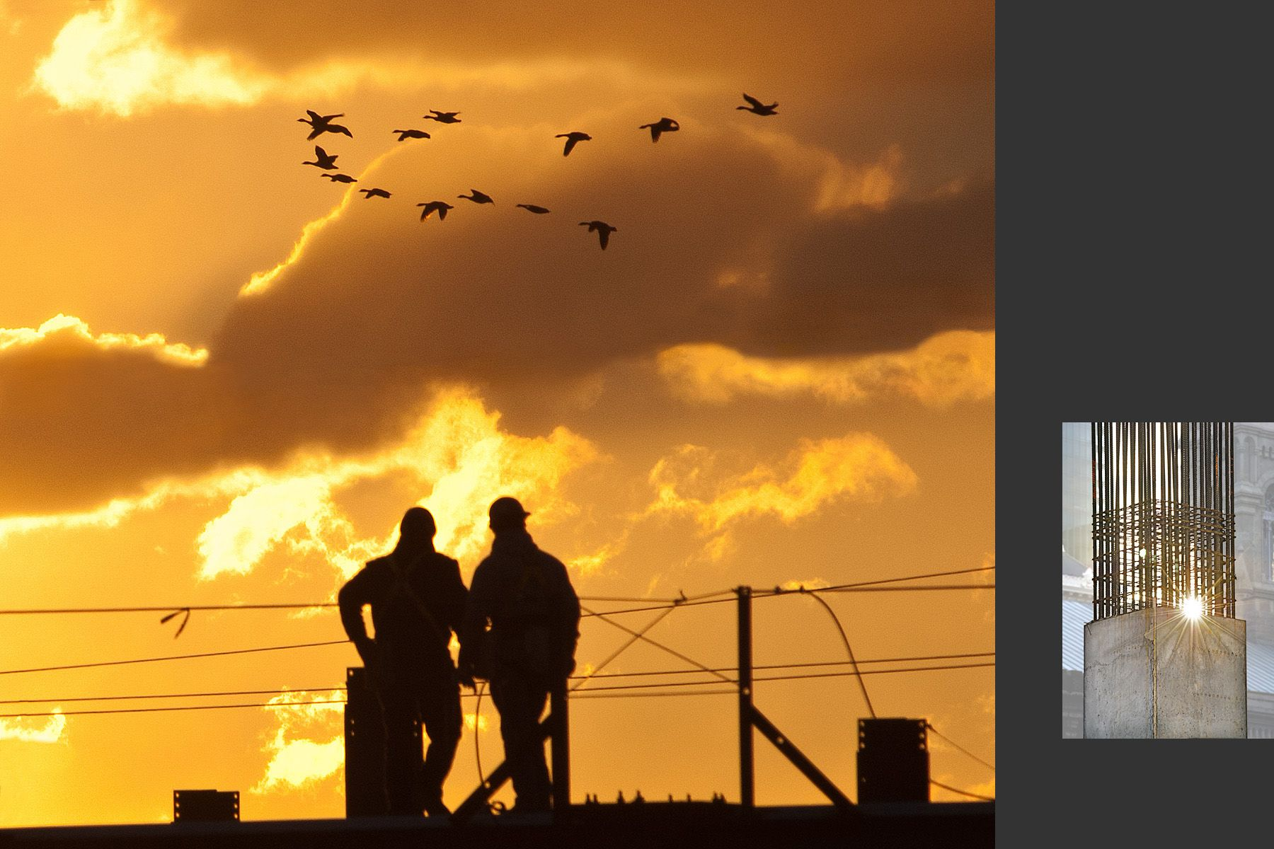 Construction workers pause to watch geese fly by at dawn;  Sunset over rebar