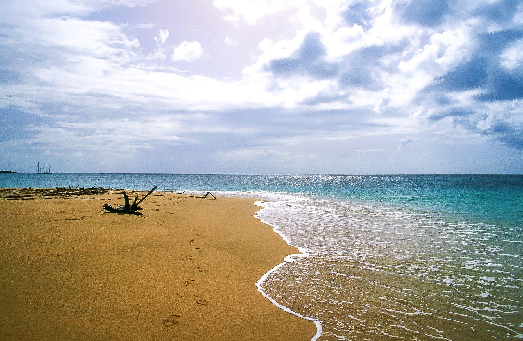 Vieques, Puerto Rico | Green Beach