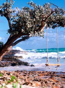 Tree Swing at Beach - Travel Photographer New York