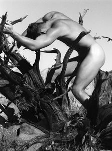 Model With Tree - Fine Art Photography Los Angeles