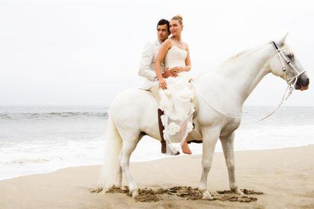 Wedding Couple on Horse - Wedding Photographer In NYC