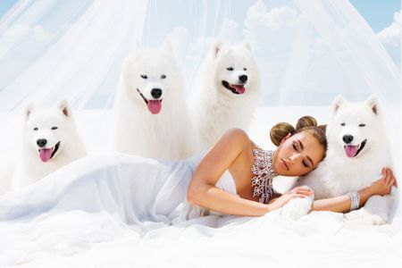 Bridal Girl with Dogs - Event Photographer Los Angeles