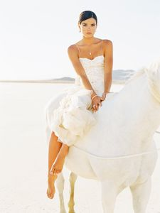 Bride and Horse - Wedding Photographer In NYC