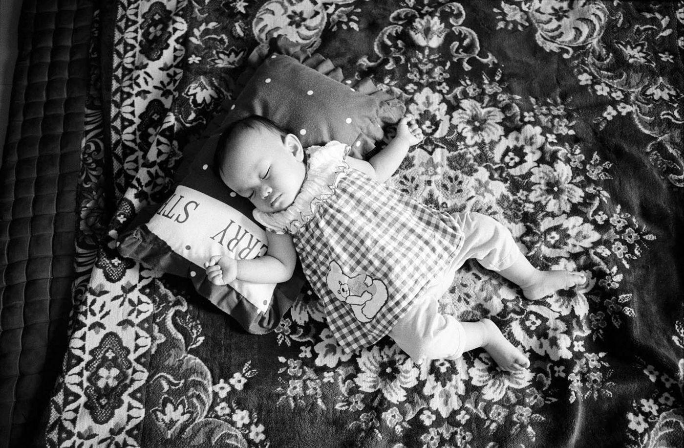 Ayu taking a nap