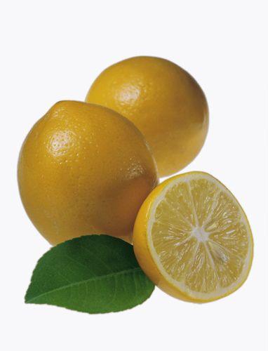 1rethemeyer_meyer_lemons.jpg