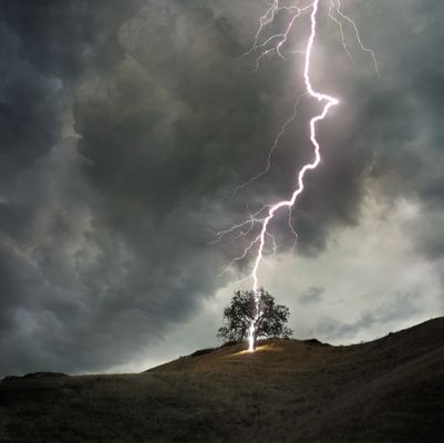 _LIGHTNING-TREE-conceptual.jpg