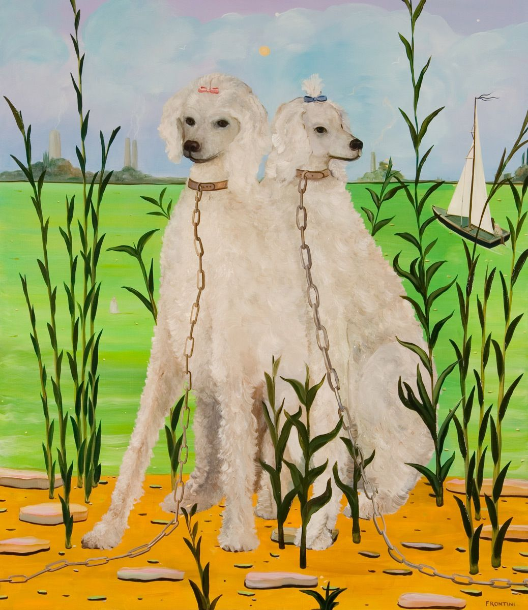 Breeding Pair (White Poodles)