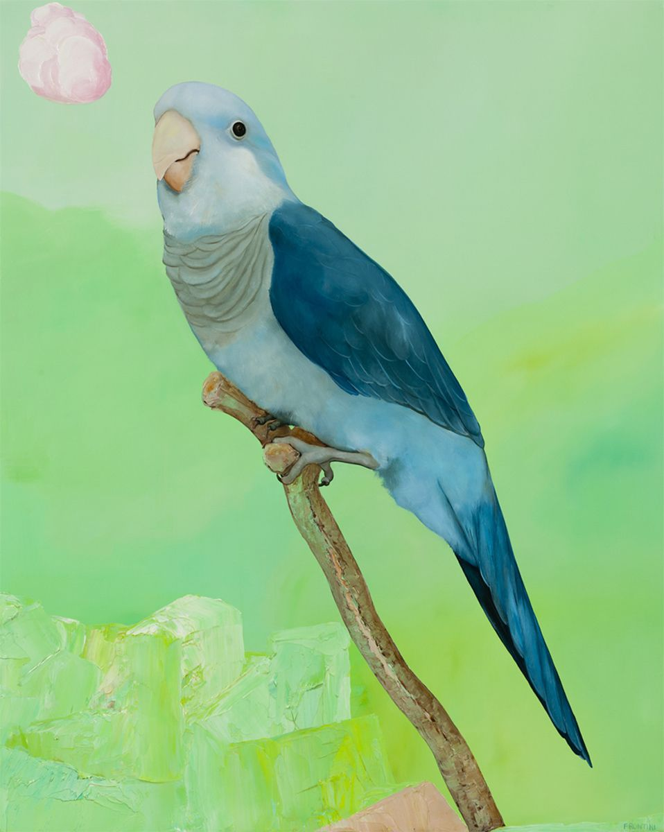 Blue Parrot, Pink Cloud