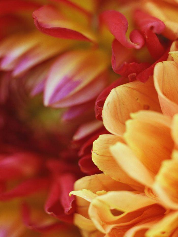 9_photo-1.jpg