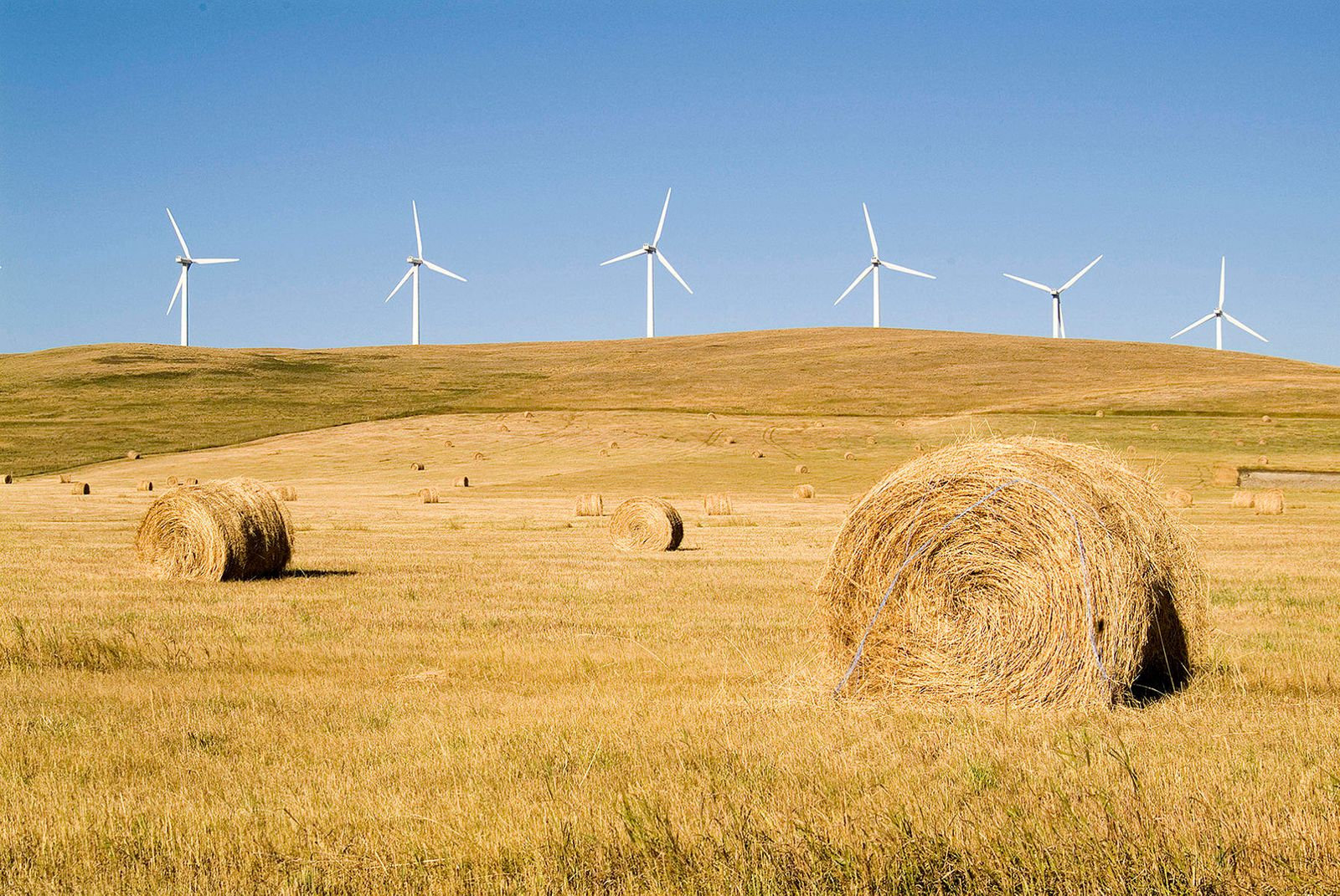 bales and turbines for a book for the Government of Alberta