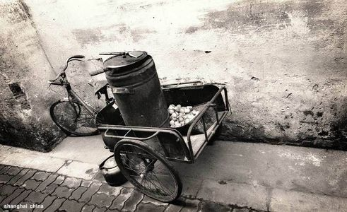 14_1shangai_china_eggcart.jpg