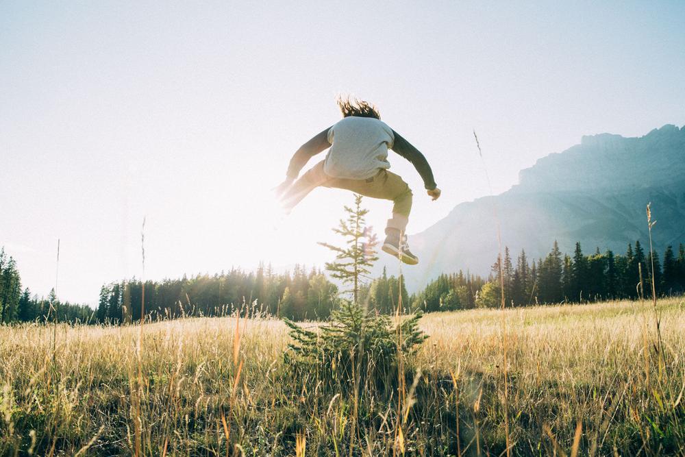 Danny Davis. Tree Hopping, Banff
