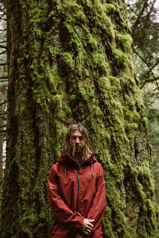 Mark Sollors, Mossy Tree